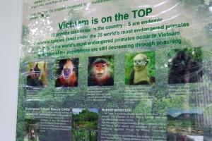 """Abb. 5: Die 5 Primatenarten Vietnams, die zu den traurigen """"Top 25"""" der Welt zählen (© Manuela Lembeck)"""