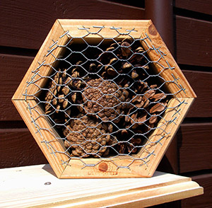 Nützlingswaben bieten beispielsweise Florfliegen oder Marienkäfern Unterschlupf © M. Resch