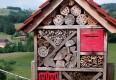 Insektenhotel © Barbara Oberfichtner