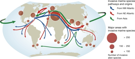 Invasionsbiologie Hauptwege der Neobiota: Major pathways and origins of invasive species infestations in the marine environment. (February 2008). In UNEP/GRID-Arendal Maps and Graphics Library. Retrieved 16:15, May 3, 2015 from http://www.grida.no/graphicslib/detail/major-pathways-and-origins-of-invasive-species-infestations-in-the-marine-environment_7eb0