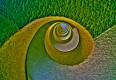:: 10 Fragen an berufstätige BiologInnen: Wolfram Tertschnig