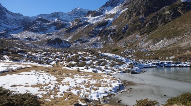 Biotop-Portrait Fotoprojekt und Biotopbeschreibung des Längentals (Kühtai, Stubaier Alpen)