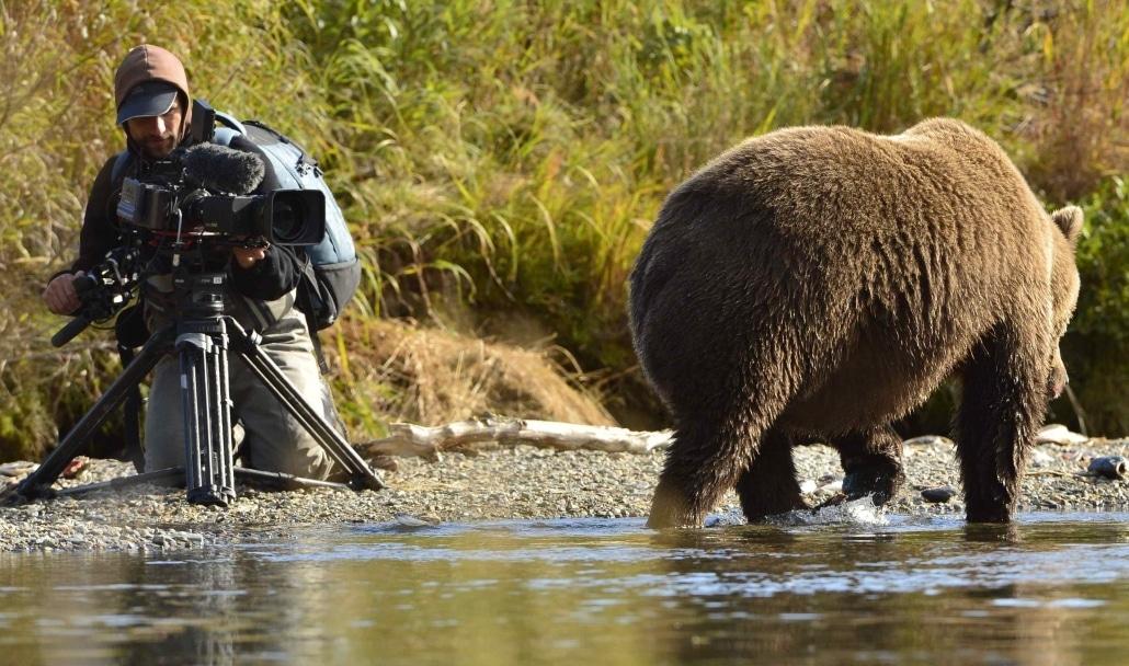 """""""Der Bär in mir""""_Mit Natur und Wildnis auf Tuchfühlung"""