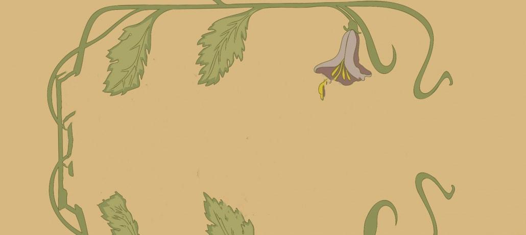:: PflanzenApp – der Pflanzen-Quizmaster für unterwegs