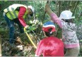 :: Der Wald als Naturpädagoge