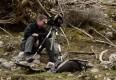 :: 10 Fragen an berufstätige BiologInnen: Mag. Alexander Maringer – Naturraummanagement Nationalpark Gesäuse