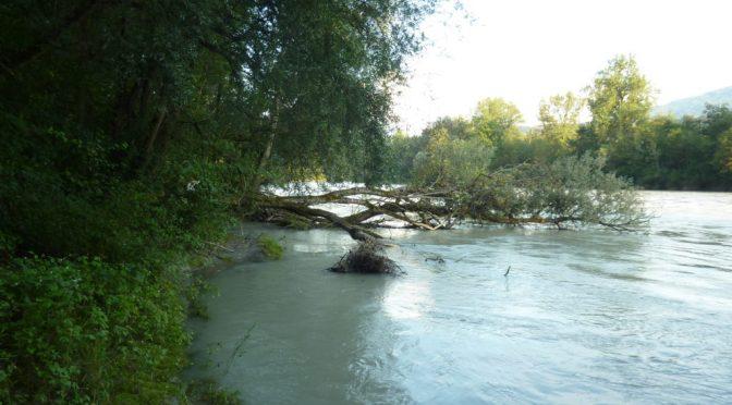 I.N.F. SENSES Land am Wasser