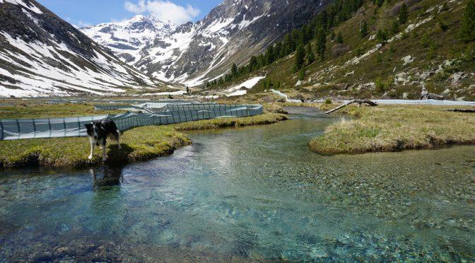 Petition für das Längental und die Gletscherbäche